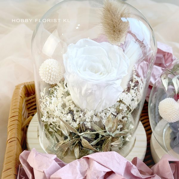 Dream Preserved Flower Bell Dome Malaysia for Valentine's Day 2021